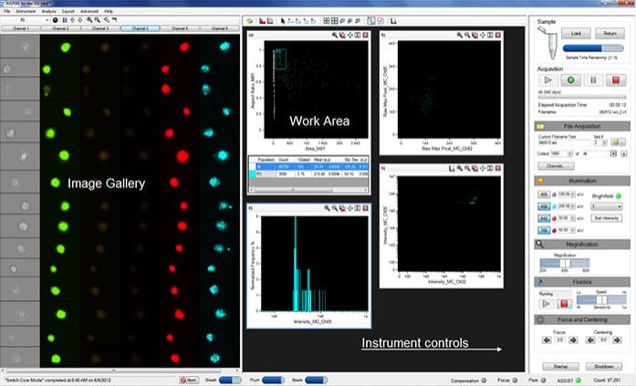 Imaging Flow Cytometry